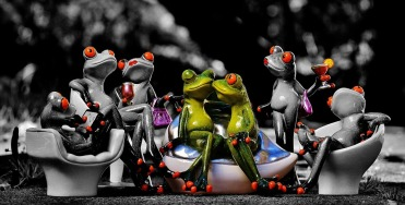 frogs-1421183_960_720